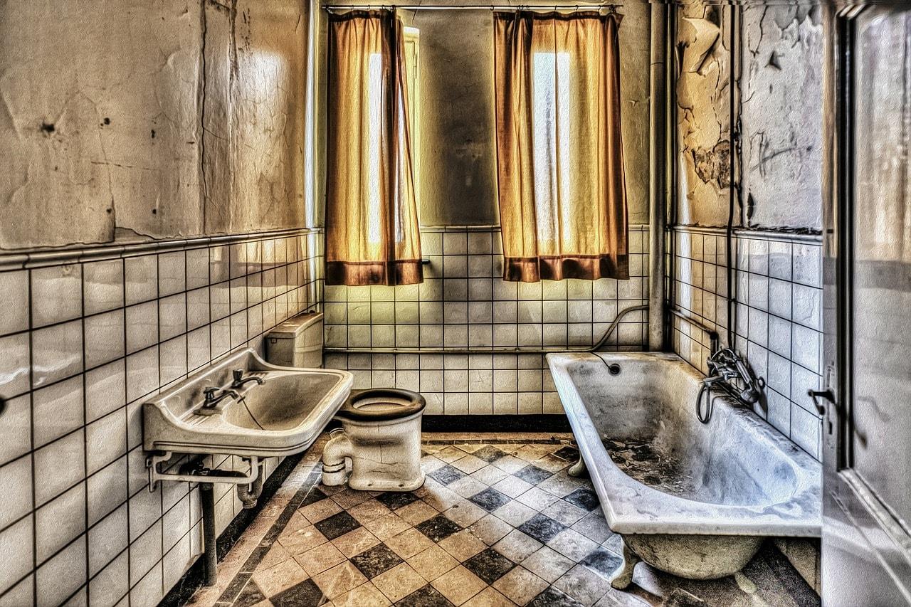 ᐅ Hohe Luftfeuchtigkeit im Bad lockt Ungeziefer an