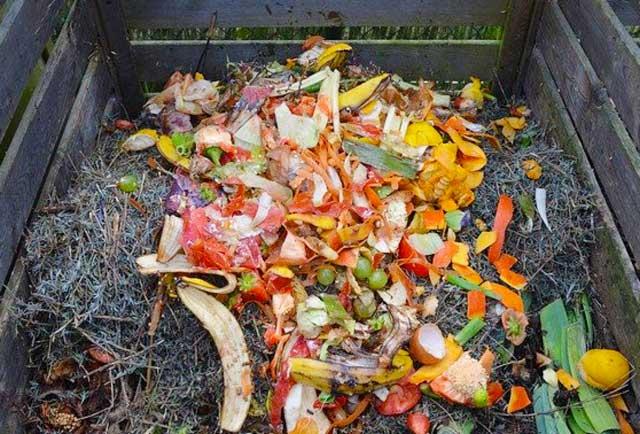 Nicht alles, was man auf dem Bild sieht, darf auf den Kompost